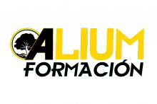 Alium Formación