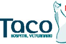 Clínica Veteterinaria Taco