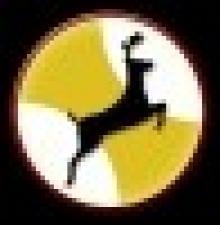 AINAMHO - Asociación Internacional de Acupuntura y Medicina Holistica