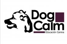 Dog Calm Castellón