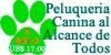Peluqueria Canina Facil