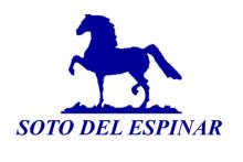 Soto Del Espinar