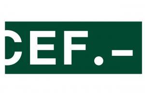 Cef - Centro de Estudios Financieros