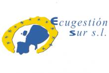 Ecugestion Sur S.L.