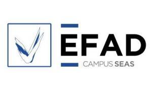 EFAD - Escuela de Formación Abierta para el Deporte