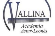 Centro de Formación Narseo Vallina