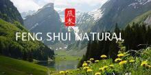 Escuela Feng Shui Natural