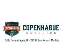COPENHAGUE Estudios