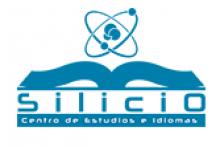 Academia Silicio