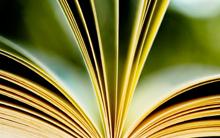 Grado de Logopedia (interuniversitario: UVic-UCC, UOC)