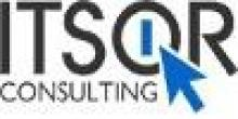 ITSOR Consulting