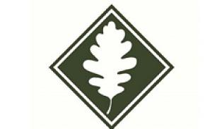 Gheos proyecto Natural SL