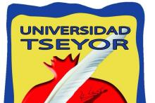 Universidad Tseyor