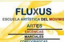 Escuela Artística del Movimiento Fluxus