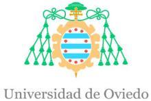Unidad de Investigación en Emergencia y Desastre