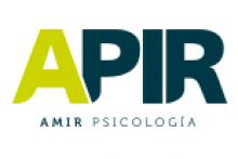 Academia APIR