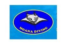 Moana Diving
