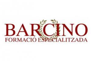 Barcino Formación