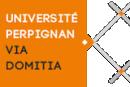 Universidad de Perpiñán, Programa Miro