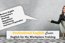 Professional English Center