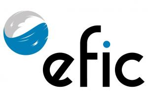EFIC – Escuela de Formación Integral en Coaching