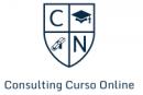 Consulting Cursos Online
