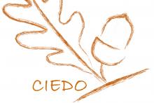 Centro Internacional de Estudio y Diseño Organizacional (CIEDO)