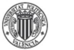 UPV - Departamento de Proyectos de Ingeniería