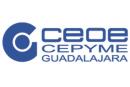 Ceoe-cepyme Guadalajara