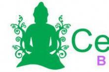 Centro Dharma