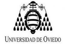 Universidad de Oviedo Master en Transporte y Gestión Logística