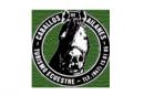 Club de Turismo Ecuestre Caballos de Ailanes