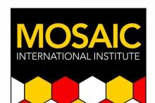 Mosaic International Institute, S.L.