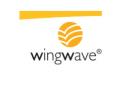 Wingwave España
