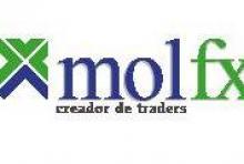 MolFx - Management