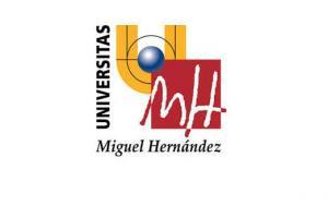 Universidad Miguel Hernández de Elche