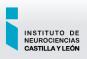 INCYL Instituto de Neurociencias de Castilla y León (Universidad de Salamanca)