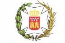 Colegio Oficial de Diplomados en Enfermería de Madrid