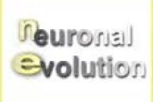 Neuronal Evolution