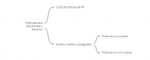 Prácticas para estudiantes y becarios