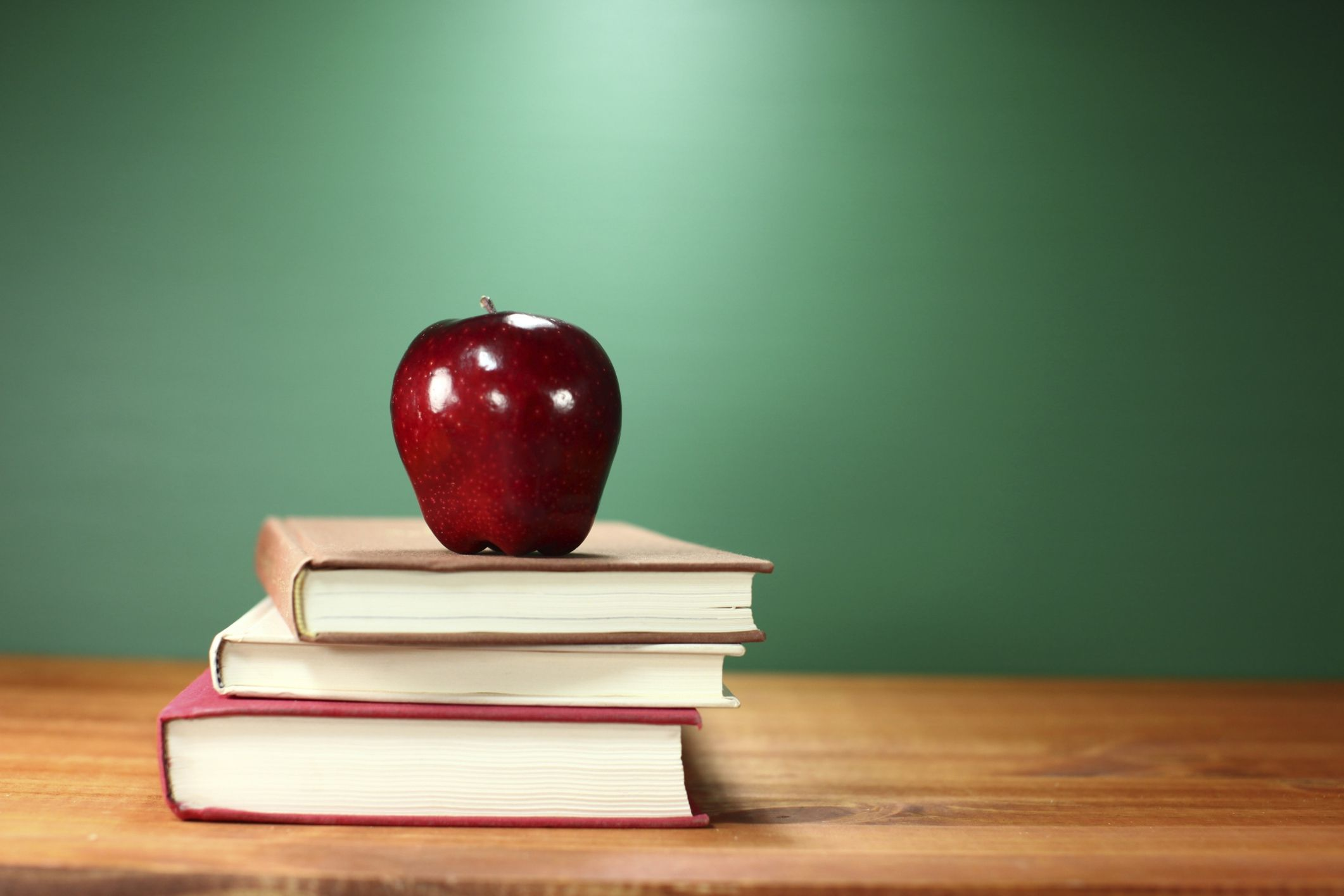¿Qué salidas profesionales pueden tener los estudios en pedagogía?