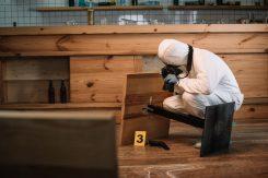 ciencias forenses criminologia