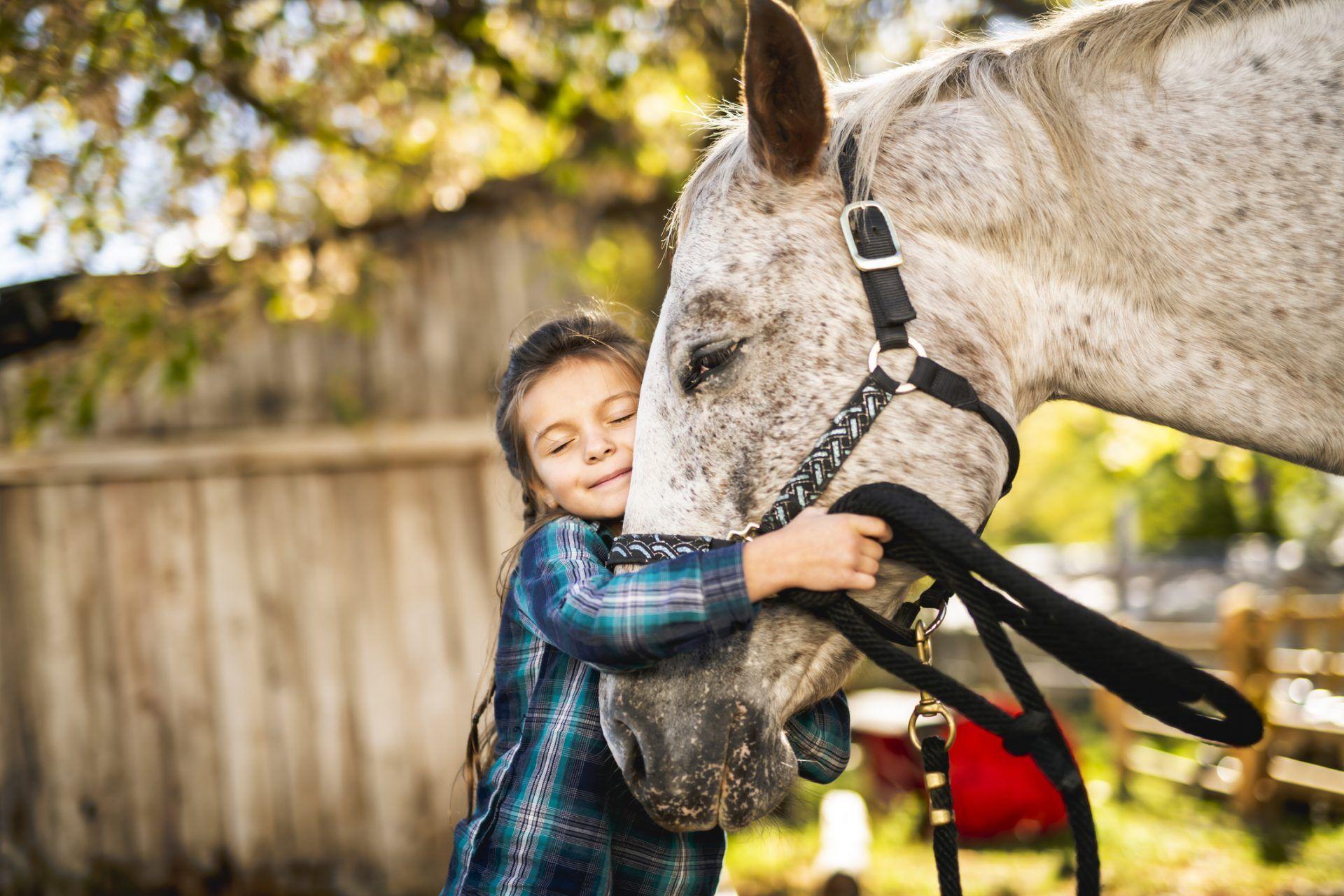 Equinoterapia: beneficio del uso de caballos para fines terapéuticos