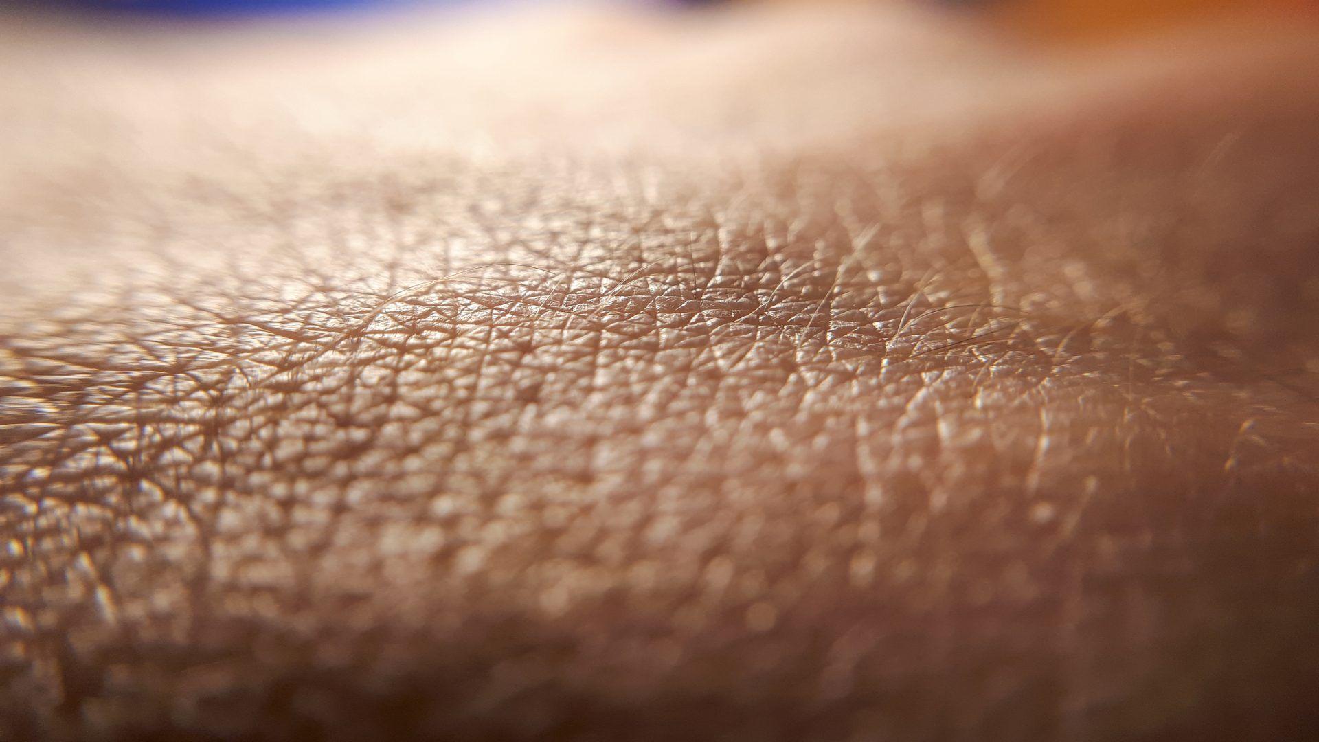 ¿Sabes en qué capa de la piel se alojan tus tatuajes?