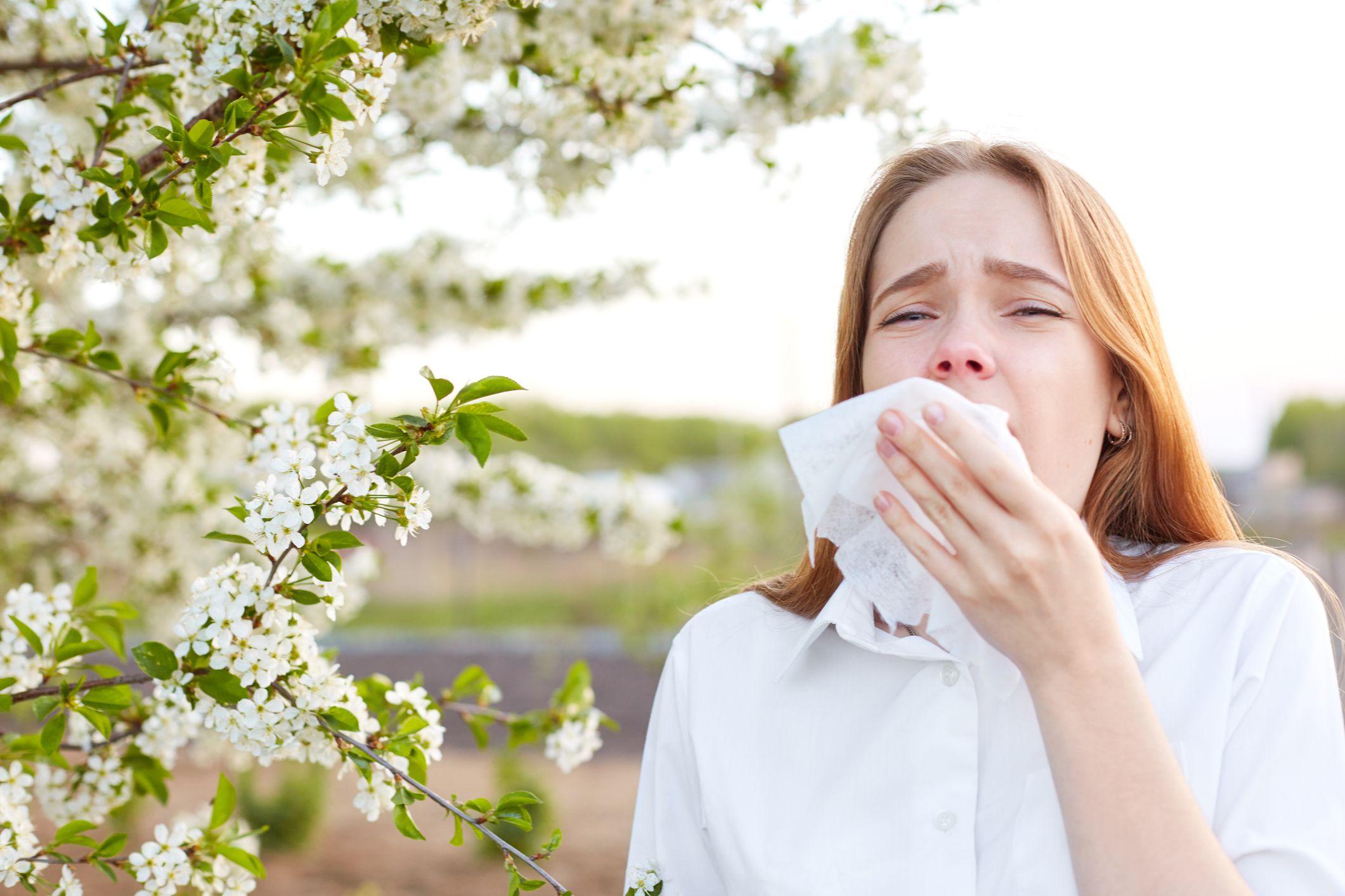 Alergias primaverales: cómo tratarla y reducir sus síntomas