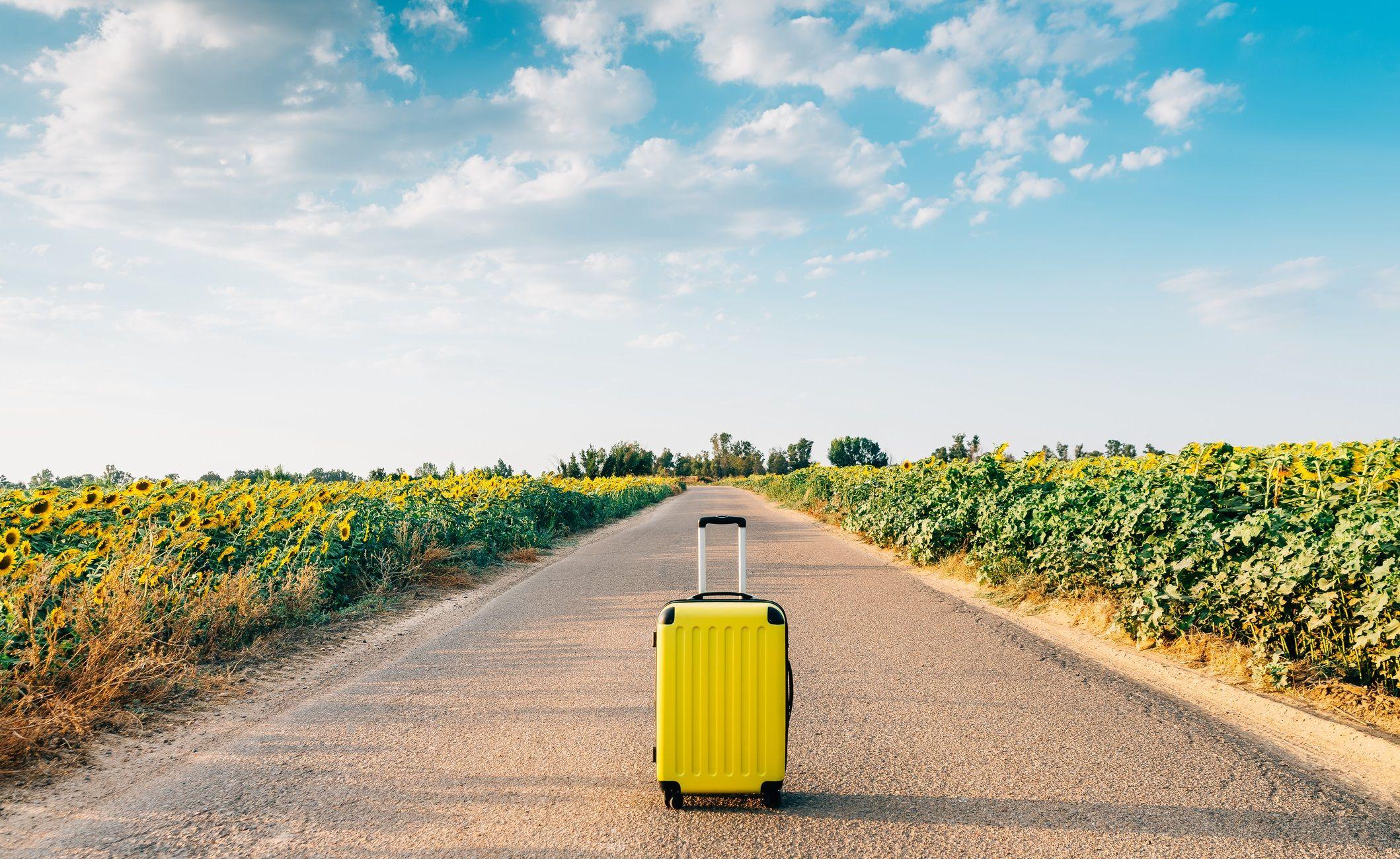 Turismo, el quinto grado universitario con la inserción laboral más rápida al finalizar los estudios