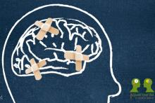 Formación en Estimulación Cognitiva