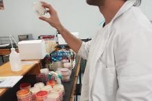 curso microbiología 3