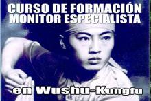 Wushu Kungfu