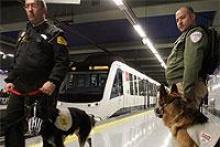 Cursos de Vigilantes de Seguridad-Guías Caninos